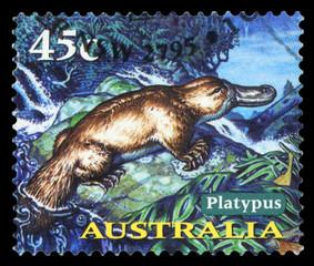 AUSTRALIA - CIRCA 1997: A Stamp printed in AUSTRALIA shows the Platypus, Animals series, circa 1997.