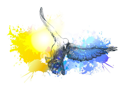Birds flying. Colorful dove vector painting
