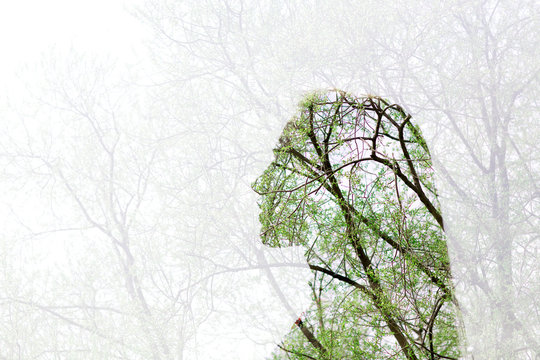 Silhouette of a young woman. Multiple exposure. Cerebral vessels and circulatory and nervous system  head concept.