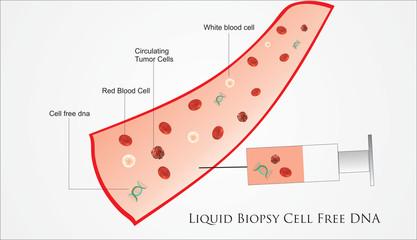 Liquid Biopsy representation in Cancer Genetic Testing