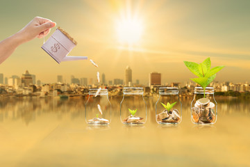 Investor hand hold a money tank pouring drop gold coin to a bottle bank with seed plant growing value for savings on photo blur cityscape on sunlight background, Business investment concept.