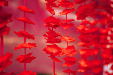 garland of red petals. indian flower garland.