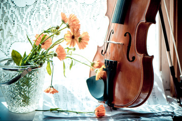 Flowers,  violin with sheet music  on windows background.