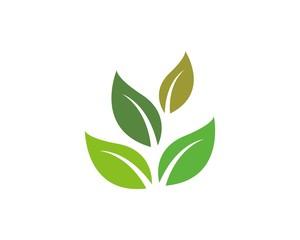 green leaf ecology vector logo