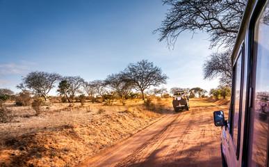 Safari road in Kenya Wall mural