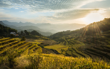 beautiful landscape of  rice terraces in China Wall mural