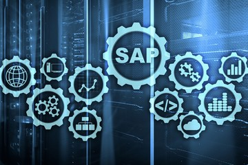 SAP System Software Automation concept on virtual screen data center.