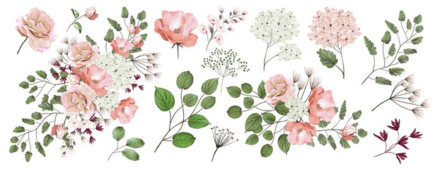 Watercolor drawing of flower compositions.Branches with leaves and flowers. Botanical illustration. Set: roses, flowers, bouquets, twigs, leaves isolated on white background. Pink rose.