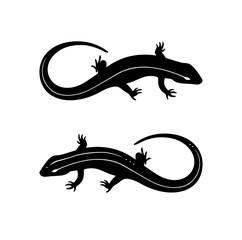 Lizard black and white tattoo illustration vector