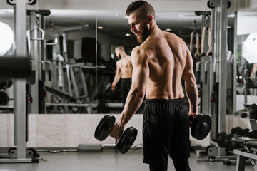Muscular strong man doing exercises with a dumbbells in the gym Wall mural