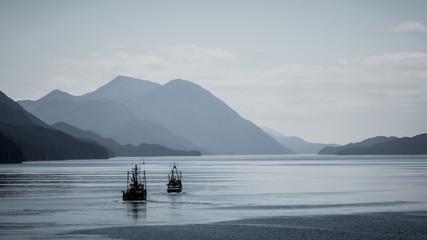 Durch die Insight Passage - British Columbia Fototapete