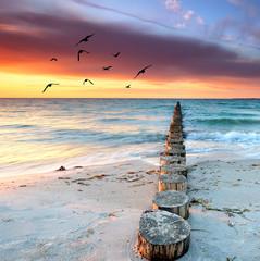 Spoed Fotobehang Bleke violet Sandstrand und unendliches Meer