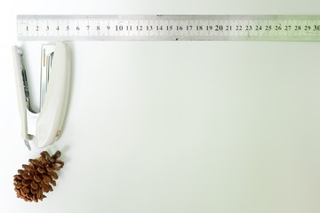 Pine/flower cone,ruler and stapler isolated on white background. Top view close up details.