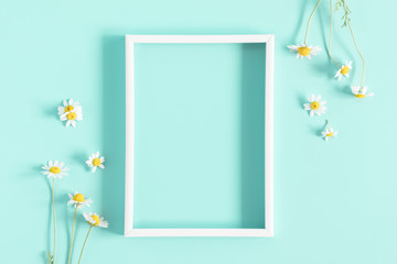 Beautiful flowers composition. Blank frame for text, spring and summer chamomile white  flowers on pastel mint background. Flat lay, top view, copy space