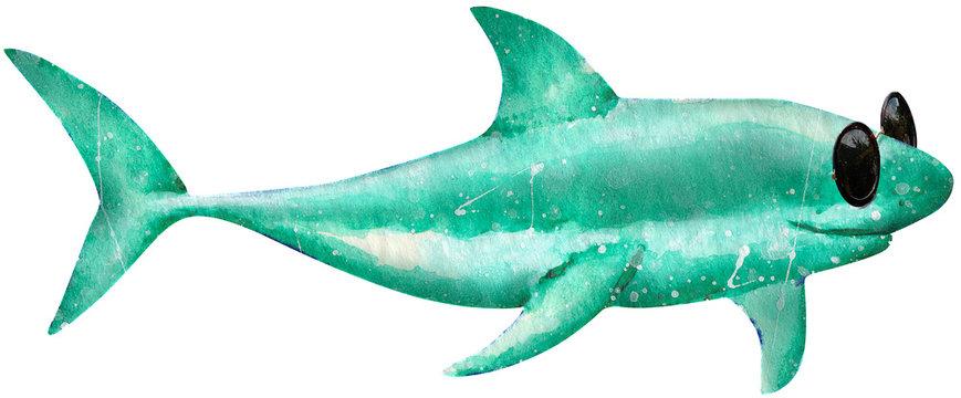 Handdrawn Aquarell Shark, Cool, Sunglasses, Chill, Watercolor, Animal, Nature