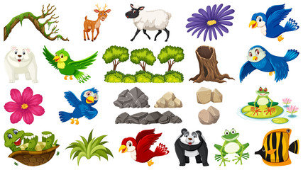 Set of animal and plant