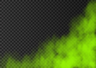 Green smoke  or fog isolated on transparent background. Wall mural