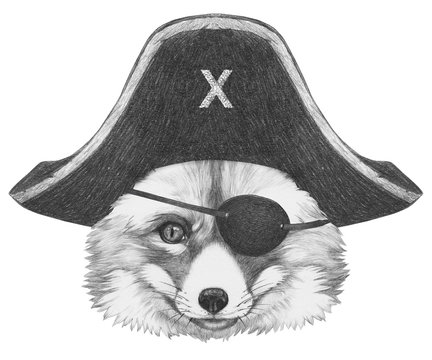 Portrait of Fox with pirate hat and eye patch. Hand-drawn illustration.