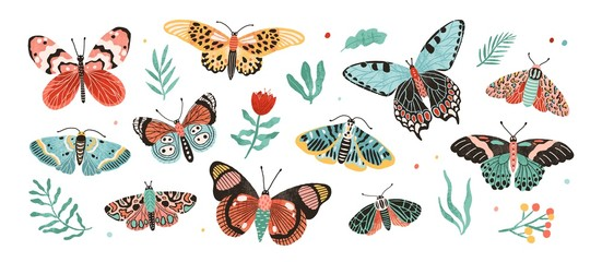 Collection of elegant exotic butterflies and moths isolated on white background. Set of tropical flying insects with colorful wings. Bundle of decorative design elements. Flat vector illustration.