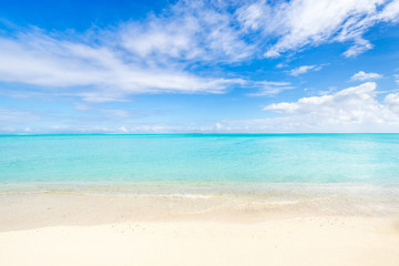 Wall Mural - Beautiful white sand beach with turquoise water as background