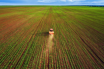 Wall Mural - Tractor cultivating field at spring, aerial top drone view