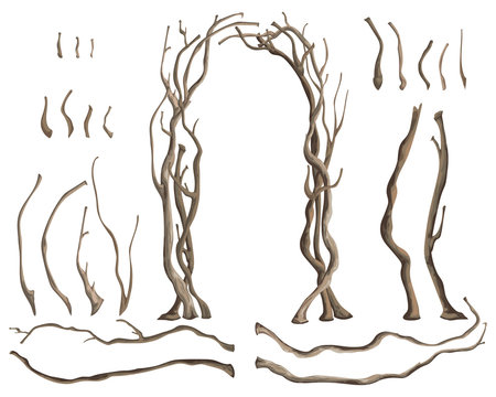 Rustic arch with tree branches and isolated design elements on white background. Vector illustration in watercolor style