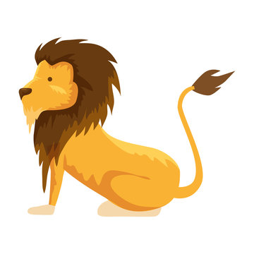 circus lion domesticated animal vector illustration
