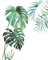 Watercolor tropical leaves poster. Hand painted exotic monstera and palm green branches isolated on white background. Summer plants illustration