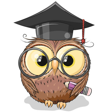Clever owl with pencil and in graduation cap