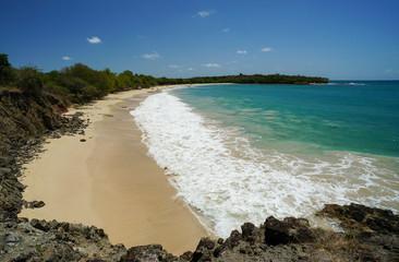 Petite-Anse des Salines in Martinique