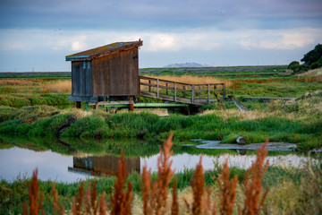 old shack at the marsh