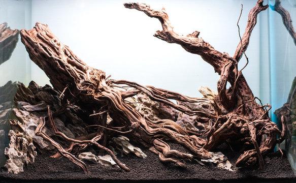 rock and driftwood hardscape arrangement .