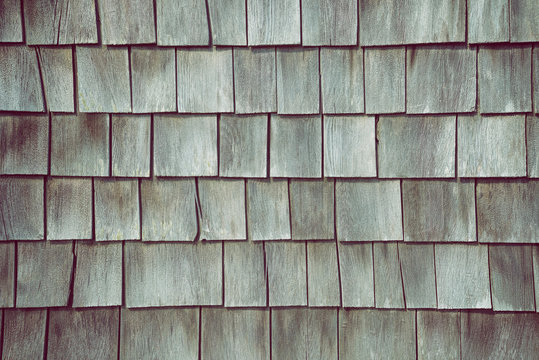 Cedar shake siding pattern for wooden texture background. Gray color with a light tint of green.