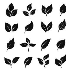 Leaf silhouette black set, decoration element design