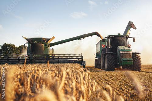 Wall mural Mähdrescher und Traktor bei der Ernte auf einem Weizenfeld