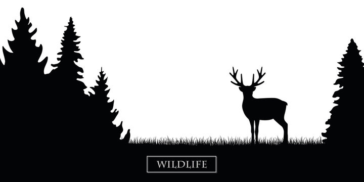 wildlife reindeer silhouette in the forest on the meadow black and white vector illustration EPS10