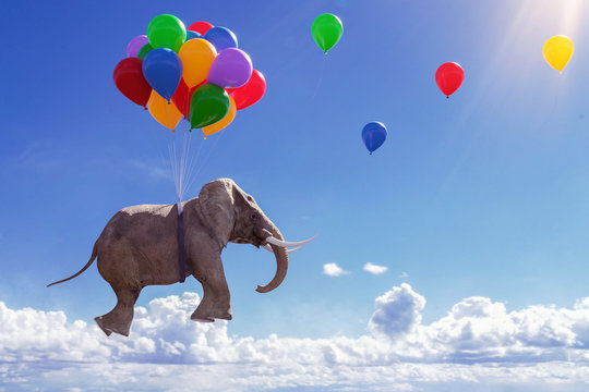 3D Illustration fliegender Elefant mit Luftballons