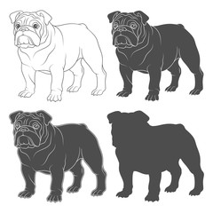 Set of black and white illustrations with english bulldog. Isolated vector objects on white background.