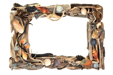 Rustic driftwood and seashell frame forming a background border on white with copy space.