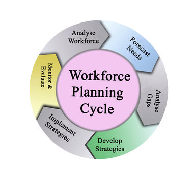 Components of Workforce Planning Cycle.