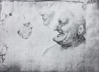 Caricatures of different people by Leonardo Da Vinci in the vintage book Leonardo da Vinci by A.L. Volynskiy, St. Petersburg, 1899