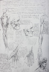 Anatomical notes. Face, head, wrist, hand. Manuscripts of Leonardo da Vinci in the vintage book Leonardo da Vinci by A.L. Volynskiy, St. Petersburg, 1899