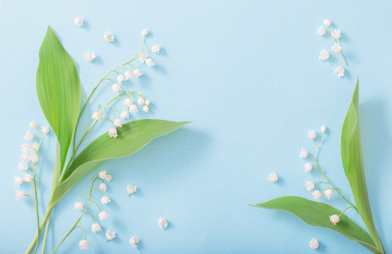 lilies of the valley on  blue  background