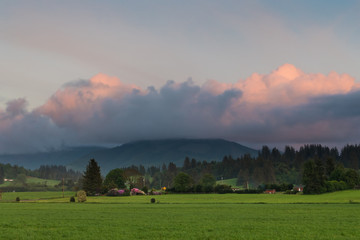 A rural scene of green farms, fields, and forests at sunset under beautiful pink and purple clouds near Tillamook, Oregon