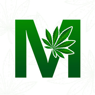 Letter with cannabis leaf for logo design.