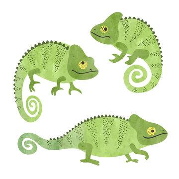 Set of funny watercolor chameleons. Vector lizards.