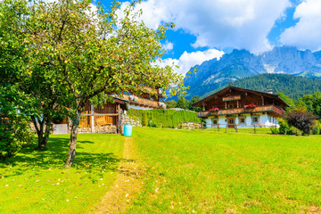 Wall Mural - Traditional alpine houses in village of Going am Wilden Kaiser on beautiful sunny summer day, Tirol, Austria