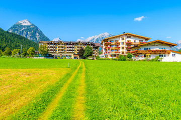 Wall Mural - Path on green meadow with typical houses in background in Pertisau town, Achensee lake, Tirol, Alps Mountains, Austria