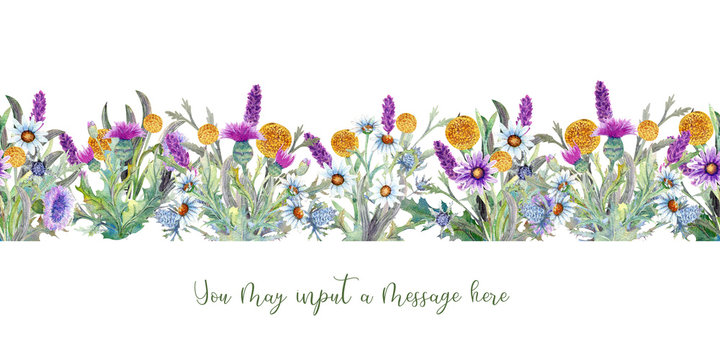 Wild flowers background Watercolor. Field flowers. Repetition of summer horizontal border. Watercolor compositions for the design of greeting cards or invitations. Illustration