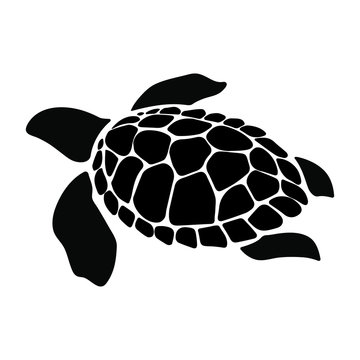 Turtle marine animal illustration. Sea turtle. Simple illustration of turtle marine animal vector icon for web design isolated on white background